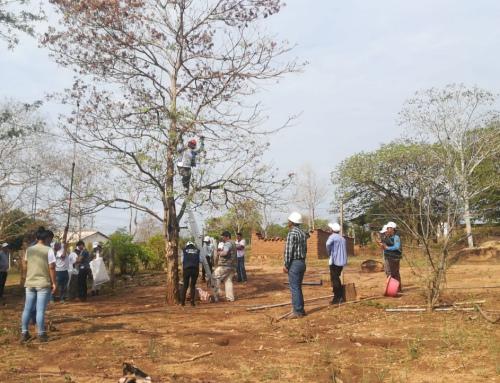 Técnicos, pueblos indígenas y voluntarios inician recolección de semillas nativas para reforestar la Chiquitanía
