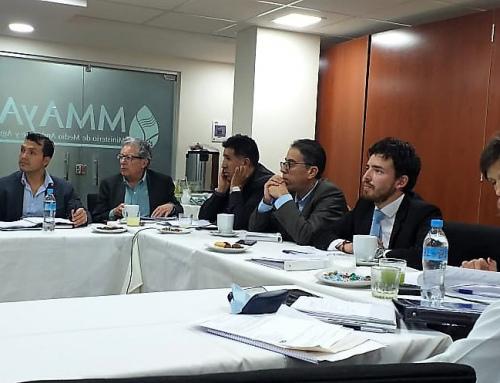 Mesa Donante del MMAyA evalúa Plan de Cuencas y analiza nuevo plan plurianual