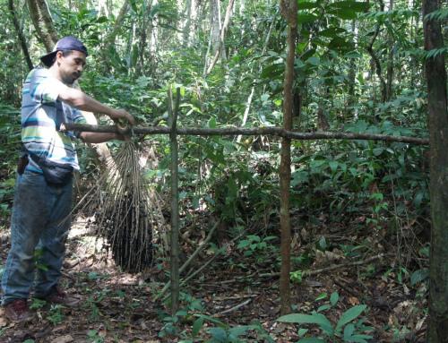 Las áreas protegidas nacionales contribuyen al sustento de vida en Bolivia