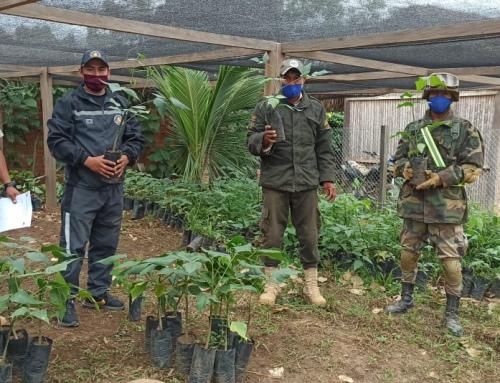 Parque Nacional Madidi entregó plantines en Apolo en conmemoración al día de la Biodiversidad
