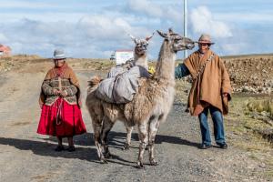 Área Natural de Manejo Integrado Nacional Apolobamba (Pacha Trek, La Paz) foto: Omar Torrico