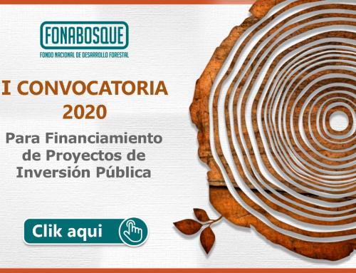 FONABOSQUE realizó el lanzamiento de la Convocatoria para Financiamiento de Proyectos