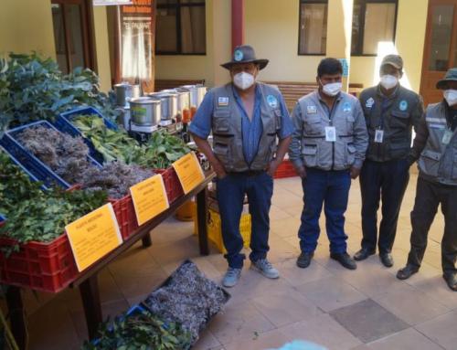 SERNAP: El Palmar se solidariza dotando plantas medicinales para enfermos de COVID-19 en Presto