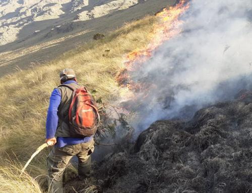 SERNAP logró sofocar incendio en el Parque Nacional Carrasco