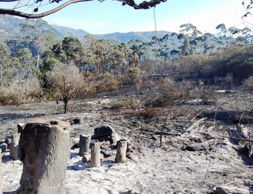Presentan denuncias por incendios en Samaipata y San Matías