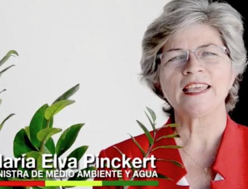 La Ministra de Medio Ambiente, María Elva Pinckert, rinde homenaje al 195 aniversario de la creación de Bolivia