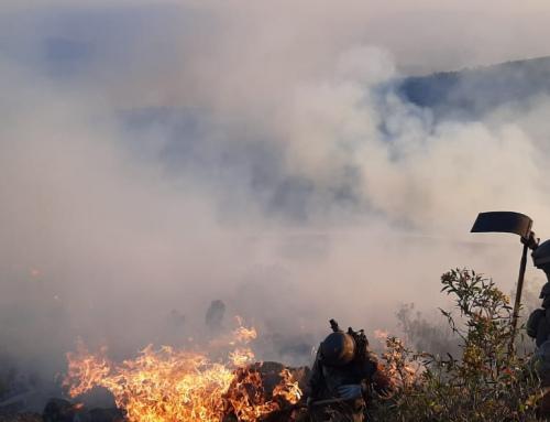 Los incendios en el Parque Nacional Tunari fueron controlados