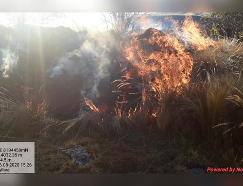 SERNAP apagó incendio en el Parque Nacional y Área Natural de Manejo Integrado Cotapata