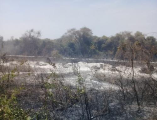 Incendio en Pailón amenaza al área protegida Kaa-Iya del Gran Chaco