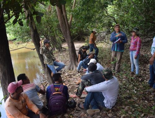 SERNAP aprueba el Plan de Control y Aprovechamiento Integral de Paiche en la Reserva Nacional de Vida Silvestre Amazónica Manuripi